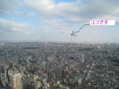 コピー (2) ~ IMG_6377.JPG