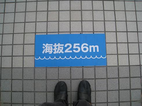 コピー ~ IMG_6388.JPG
